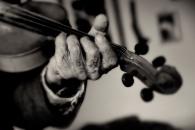 pecker dunne violin